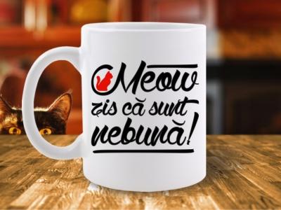 CANA MEOW ZIS CA SUNT NEBUNA 2