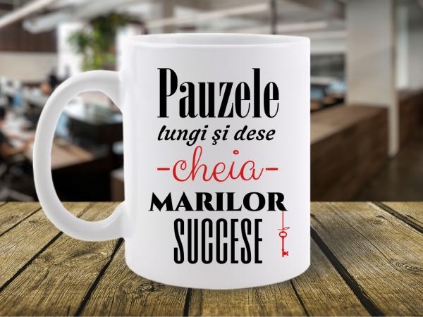 CANA MESAJ PAUZELE LUNGI SI DESE CHEIA MARILOR SUCCESE