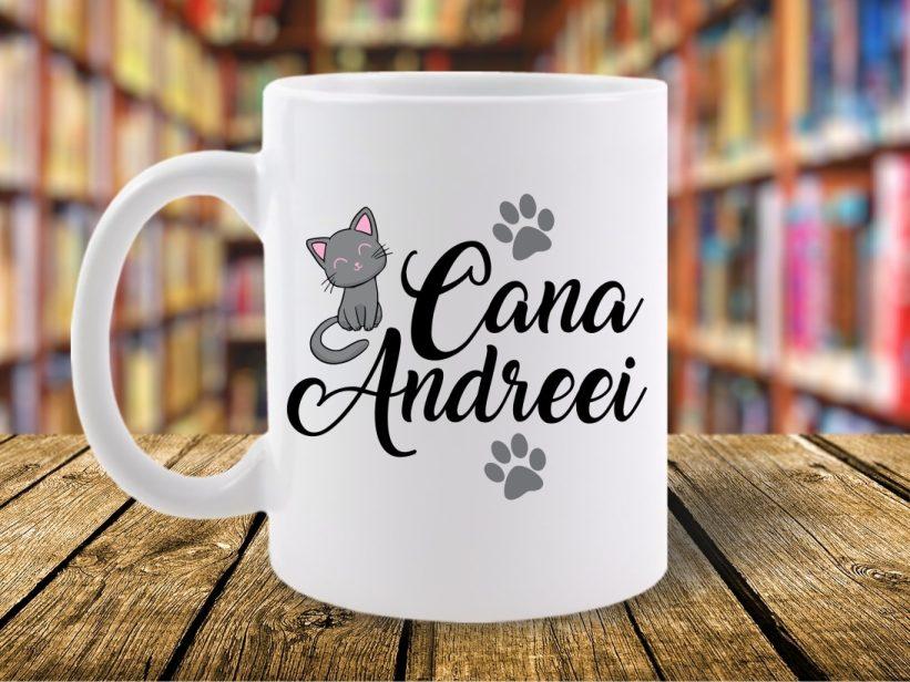 Cana Andreei