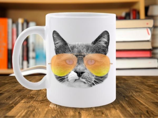 Cana City Cat Motan