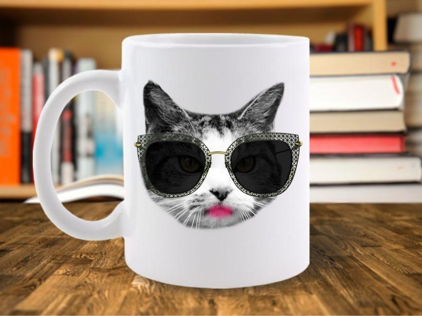 Cana Pisica City Cat