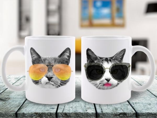 Cani Cuplu City Cats