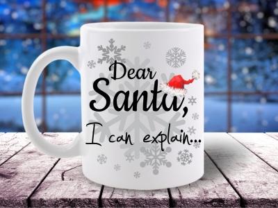 Cana Dear Santa, I can Explain