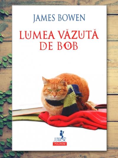 Lumea văzută de Bob (ediţia 2018)