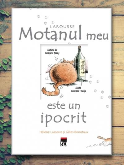 Motanul Meu Este un Ipocrit - Helene Lasserre, Gilles Bonotaux