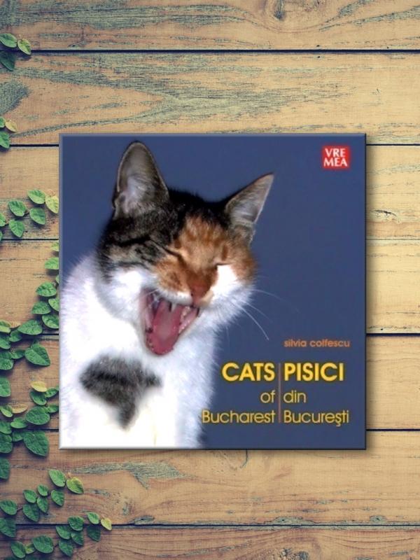 Pisici din București – Silvia Colfescu