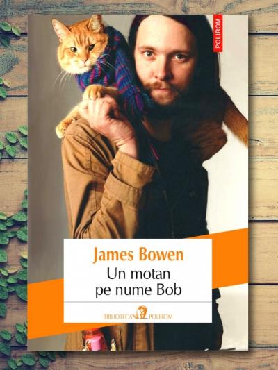 Un Motan pe Nume Bob - James Bowen