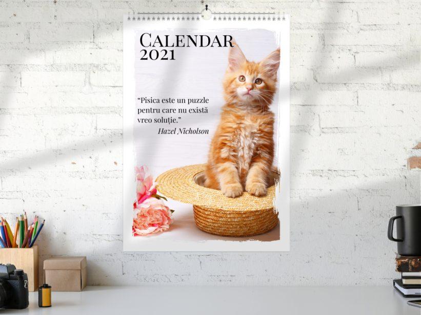 Calendar cu Pisici 2021 Citate Pisicesti