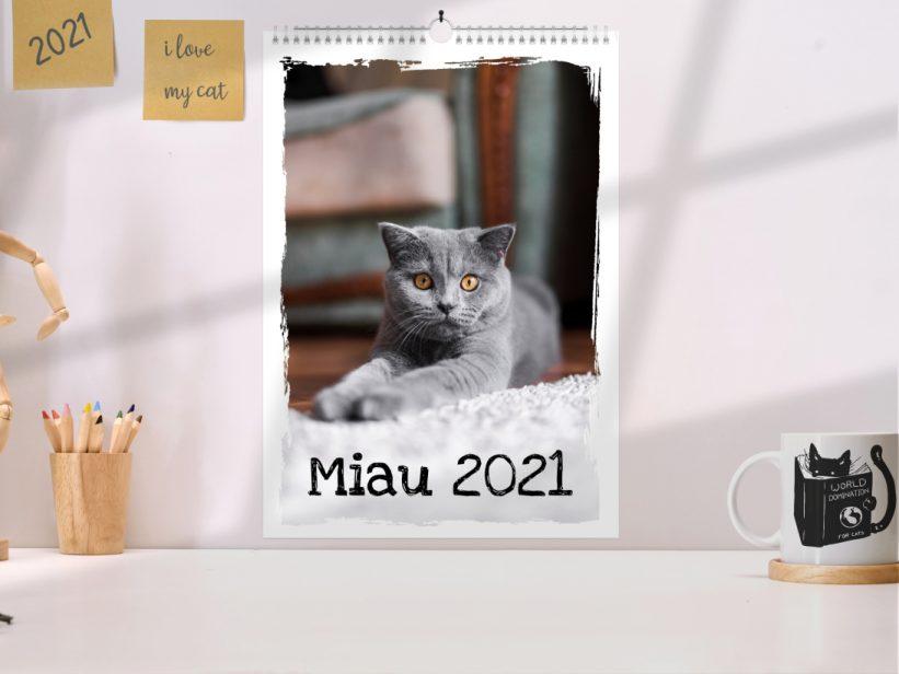 Calendar cu Pisici 2021 Miau