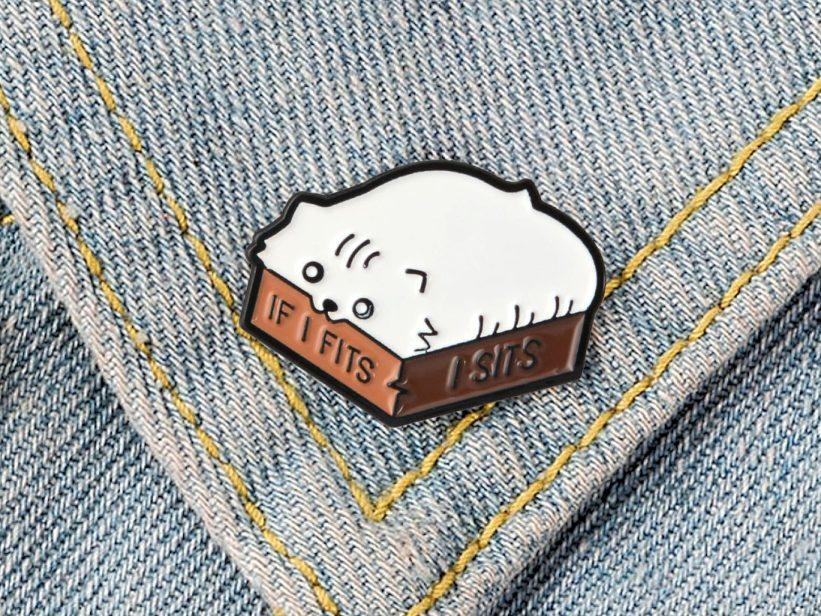 Pin Pisica in Cutie